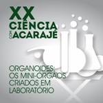 XX Ciência com Acarajé – Organoides: os miniórgãos criados em laboratório
